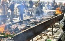 خدمات موکب ها و مردم عراق به زوار اربعین + دانلود