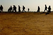 نماهنگ زیبای پیاده روی اربعین + دانلود