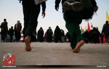روزانه بیش از ۳۰۰۰ هزار نفر زائران اربعین در موکب آستان مقدس حضرت معصومه(س) اسکان مییابند