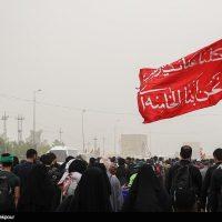 پیاده روی اربعین حسینی - تصاویر مسیر های منتهی به کربلا تصویر: حامد ملکپور